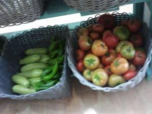 mercado ecologico3