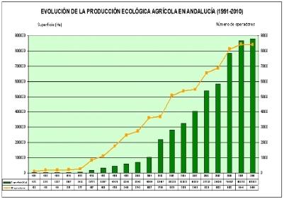 mercado ecologico5