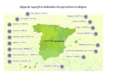 mercado ecologico6