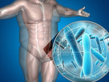 Microorganismos-Intestino-Humano