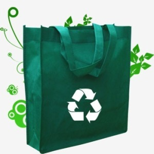 revolucion ecologica4