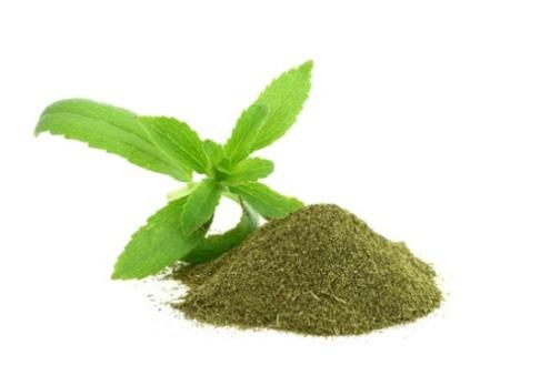 stevia3.jpg