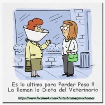 dieta-del-veterianiop